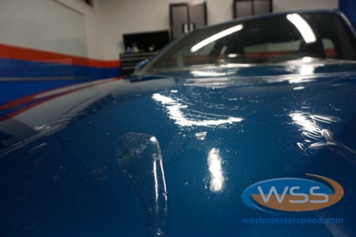BMW Paint Protection Film