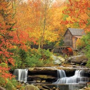 Old Grist MIll 1000 pc.