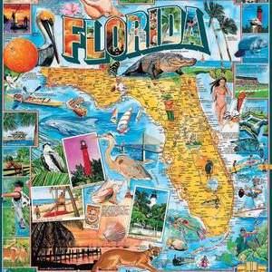 Florida 1000 pc.