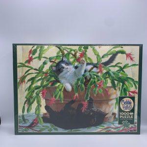 Cactus Kittens 1000 PC Puzzle