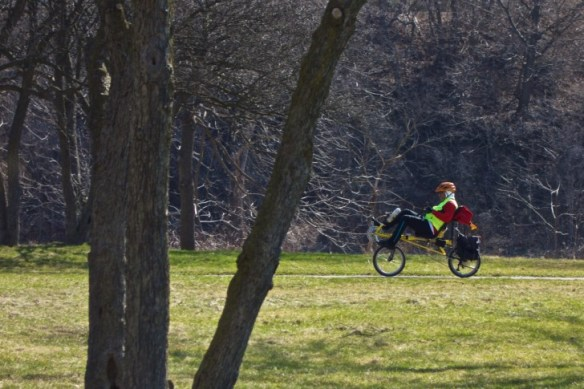 A recumbent cyclist passes by the newly green grass of Raymore Park.