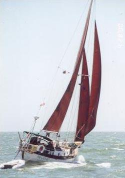 BEGONE  W32
