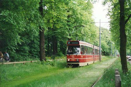 grass tram2