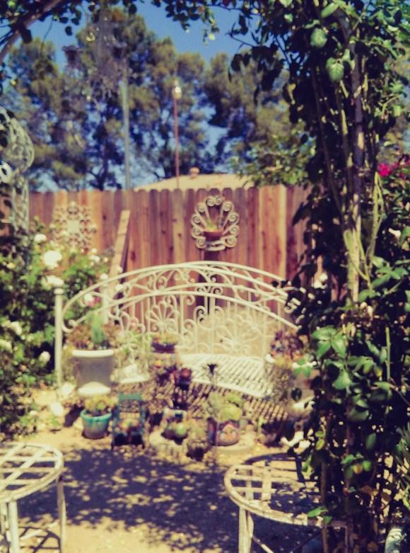 jun7-8-gardenscene