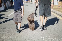 dogfriendly_event