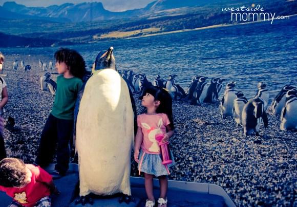 WSM_AOP_Penguin