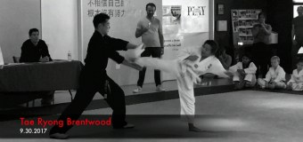 Level Up: Testing for my Second-Degree Yellow Belt at Tae Ryong Brentwood TKD
