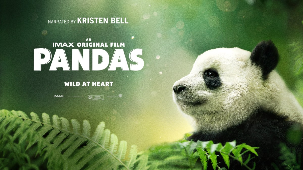 PANDAS Documentary is 40 minutes of nonstop cute in IMAX