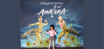 "Review: Cirque du Soleil ""Amaluna"" was amazing!"