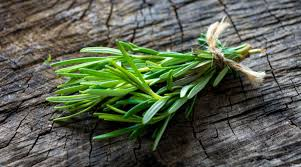 Rosemary bunched for culinary use or drying