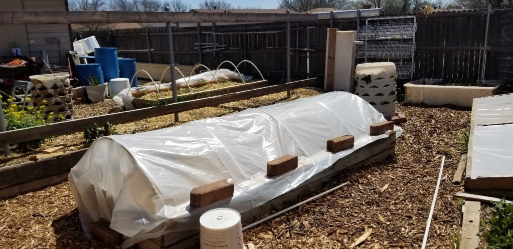 Cold Frames and Low Tunnels