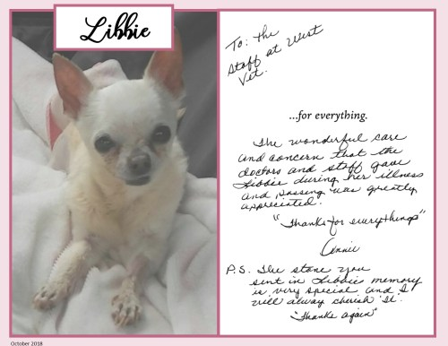 small resolution of libbie lung