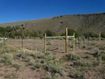 La Jara Creek Acres Colorado Vacant Lot Recreational Trout