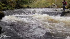 kaz3 - River Wharfe 14th October 2012