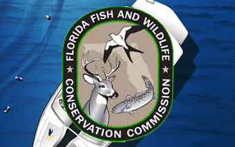 florida-fish-wildlife-boating-regulations-wet-cat-boats-saint-augustine