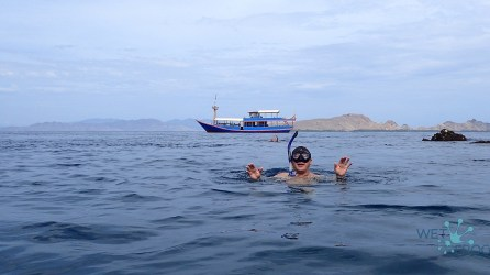 Diving in Komodo National Park - rewiew