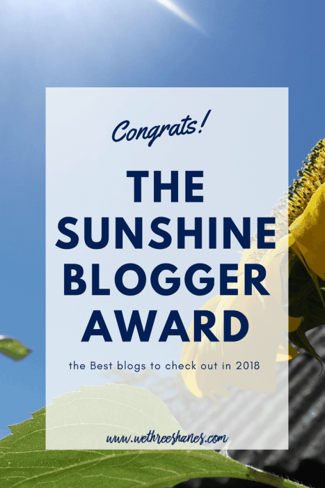 Hey ya'll! Less than 3 months in and We Three Shanes has received an award! I know, we were a bit shocked too. We're excited to share what the award is all about with you so keep reading below to find out more and the awesome bloggers we're passing it along to. | We Three Shanes