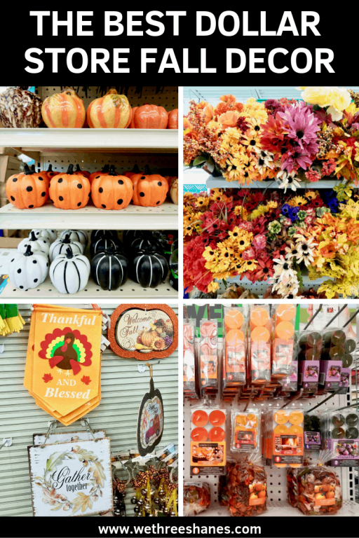 Fill your home with lovely decor this Fall, with a trip to the Dollar Tree. Today I'm sharing the Best Dollar Store Fall Decor finds to help you save money this season.   We Three Shanes