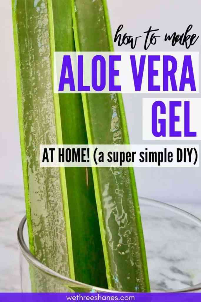 Stop buying aloe vera gel and juice from the store and learn how to make Aloe vera gel at home with this step-by-step tutorial. It's easy and cost less. | We Three Shanes