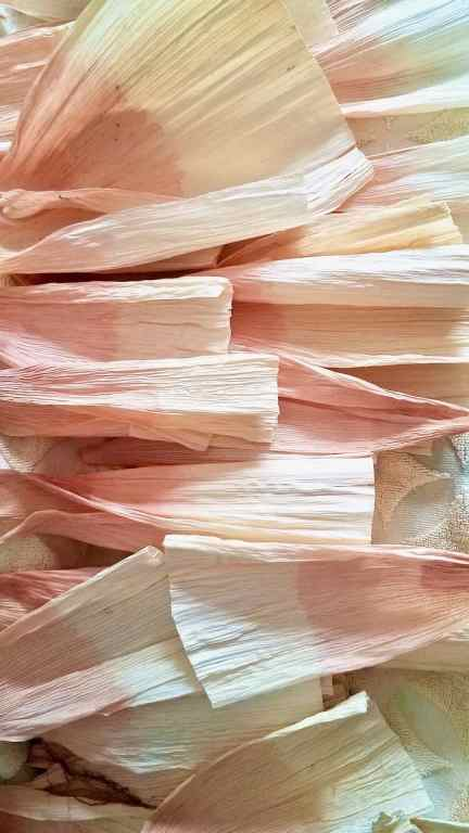 Corn husked with pink ombre tips laid out to dry.