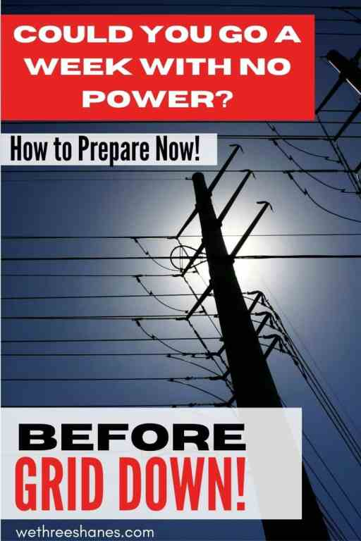 Would you be ready if suddenly your electricity and water turned off and didn't come back on for hours, days, or even a week? This grid down emergency preparedness guide for beginners will help you get ready for the first seven days of a grid down event. | We Three Shanes