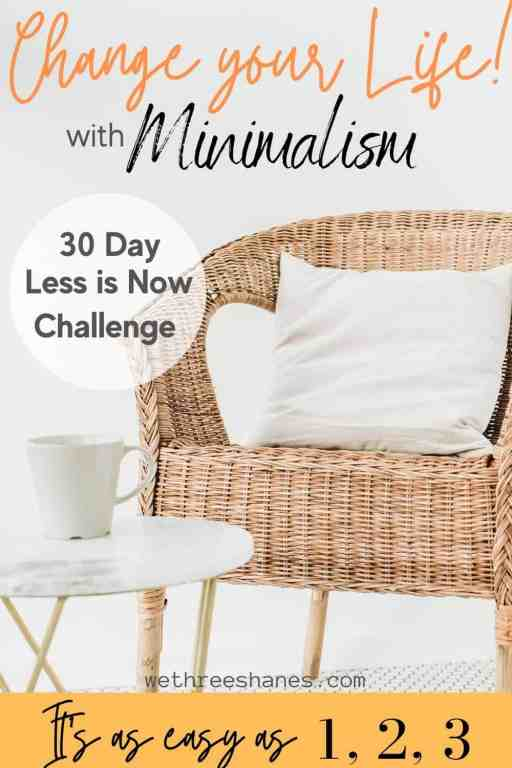 Take the Less is Now Challenge and get rid of 465 items in 30 days. That might sound like a lot but you can totally make it happen with these helpful tips. | We Three Shanes