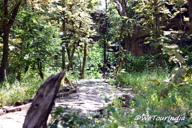 Green vegetation of Bhimbetka