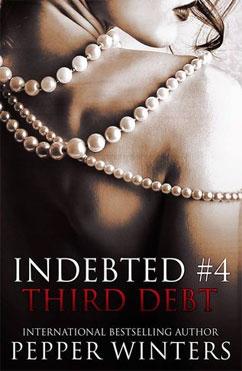 総合評価5: Third Debt: Indebted #4