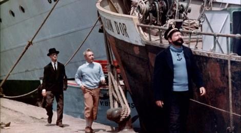 Tim und Struppi – Tim und das Geheimnis um das goldene Vlies (Sunfilm Entertainment)