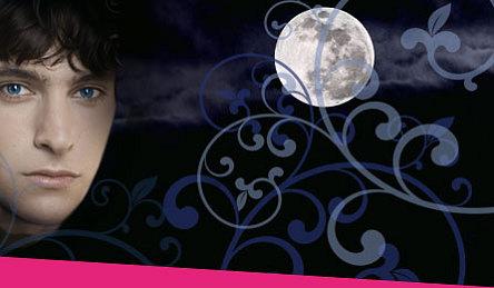 Nora Melling - Schattenblüte Band 1 und 2