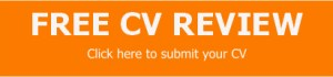 Free CV writing review