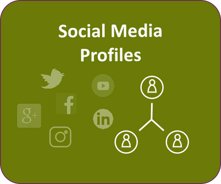 social media profile editing and writing