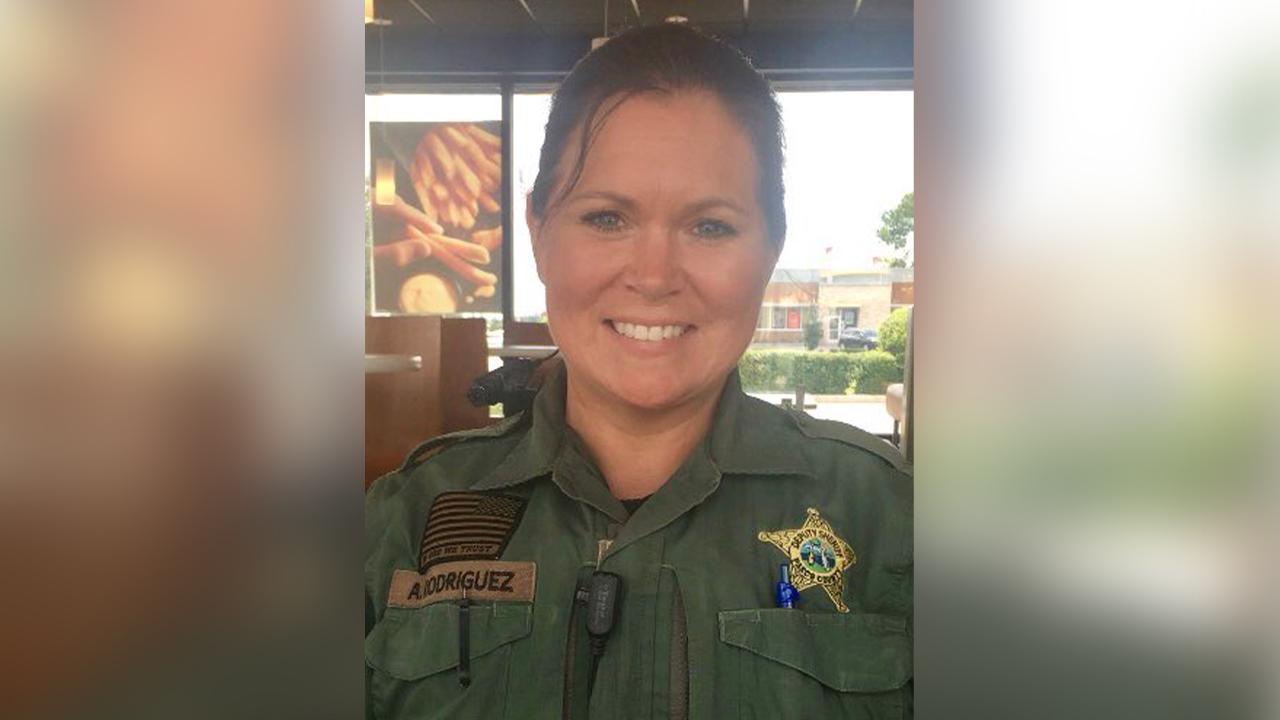 Hen Pasco County Sheriffs Office Deputies – Meta Morphoz