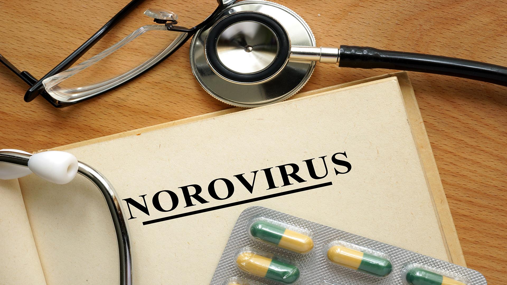 Norovirus - (Getty Images Premium access)