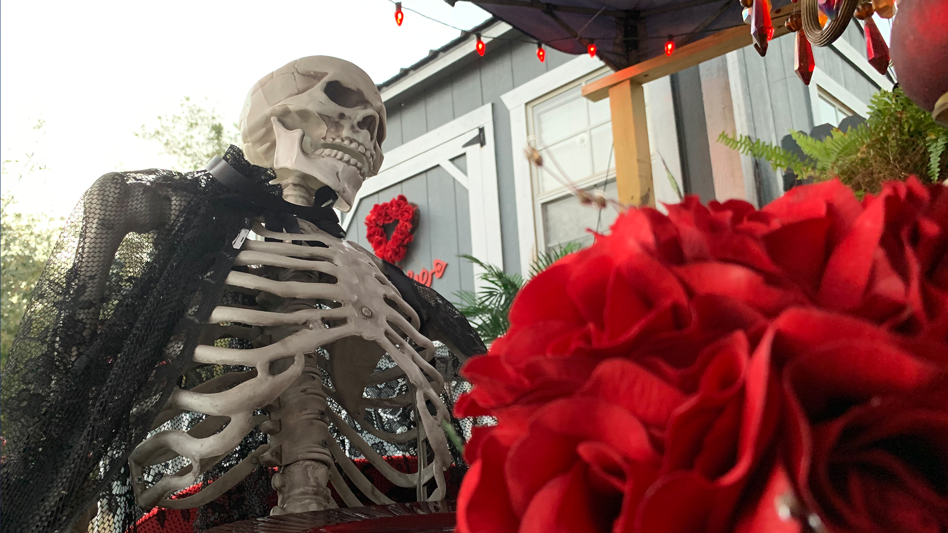 Wfla Halloween Meet 2020 Lover's Revenge' Valentine's Day haunted house opens in Plant City