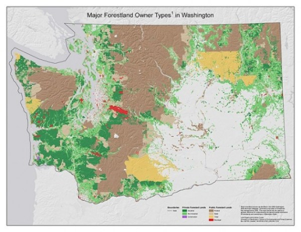 Washington Forests Washington Forest Protection Association