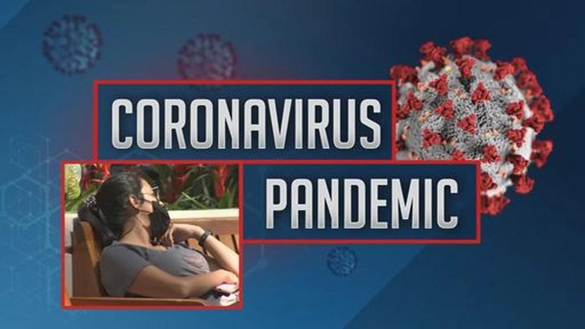 Video: New cases of coronavirus confirmed in Florida