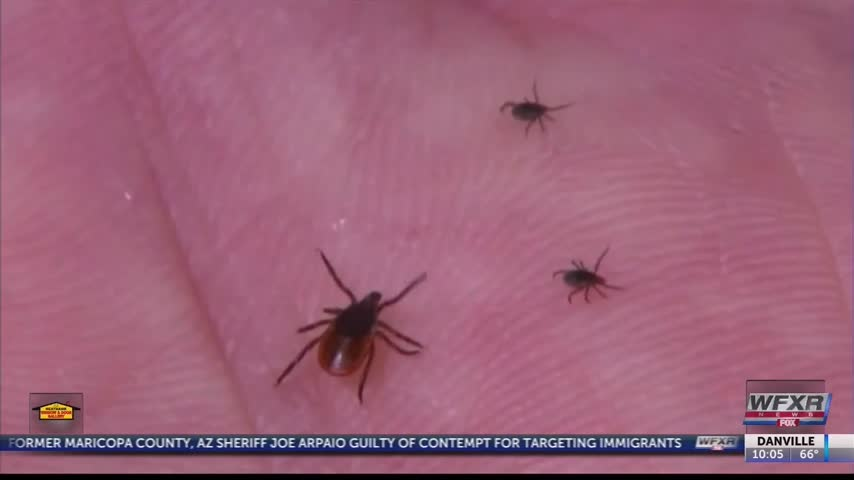 Lyme Disease a growing problem in the NRV_71740198