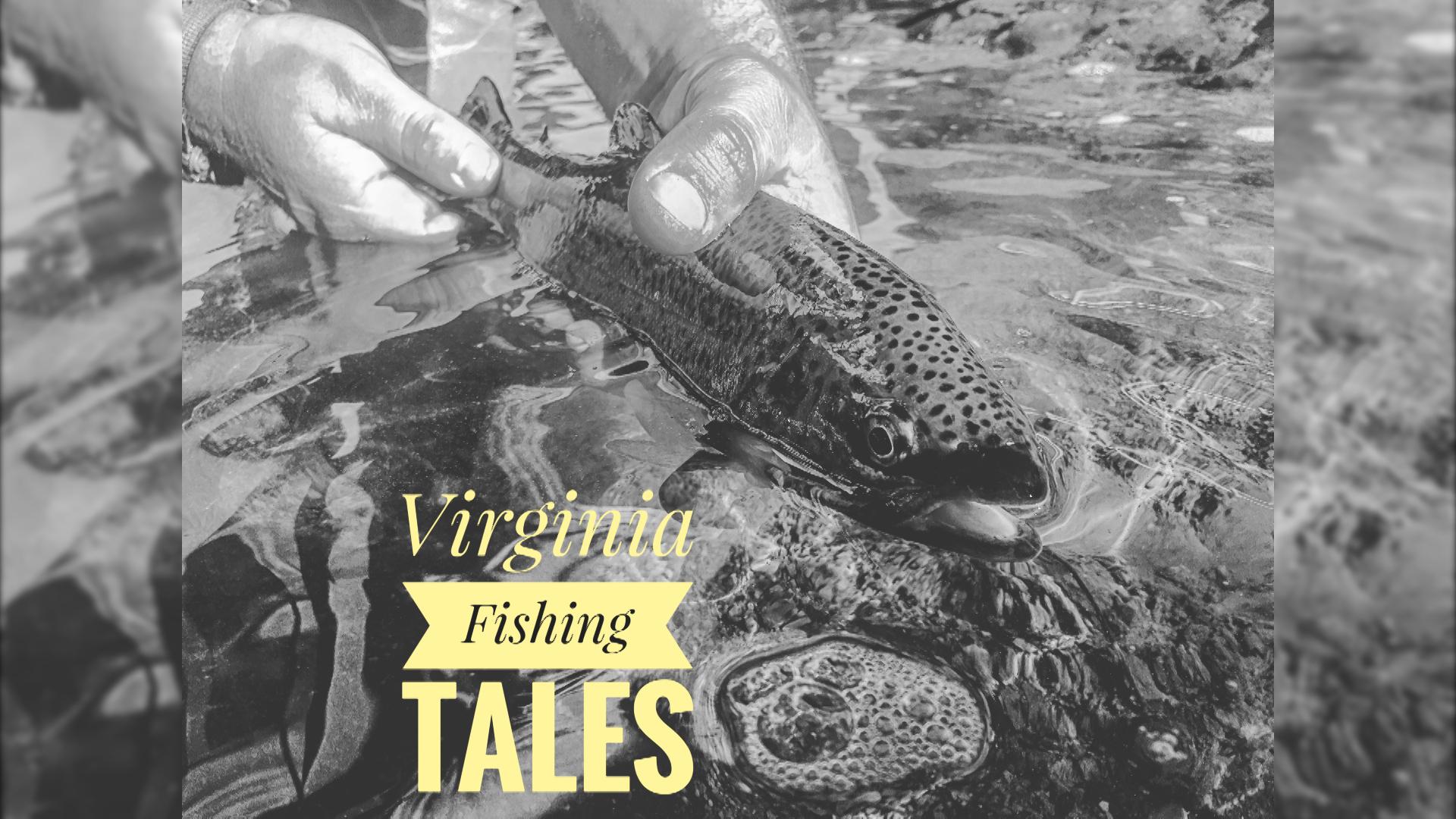 Virginia Fishing Tales_1511983350952.jpg