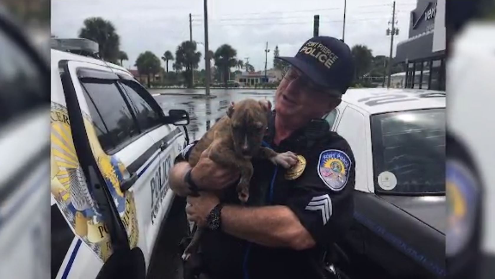 Florida officer takes in puppy not strong enough to stay in