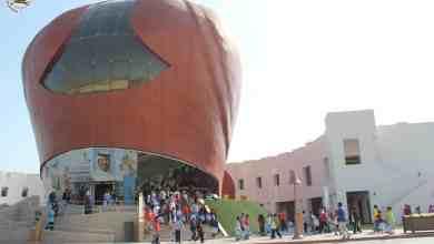 Al-Gannas Falconry to attend festival in Morocco