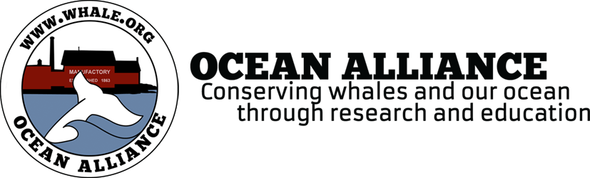 Whale.org | Ocean Alliance