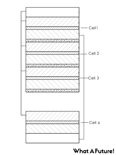 cell images