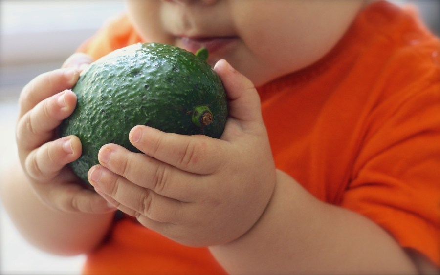 10 Healthy Snacks for a Young Toddler
