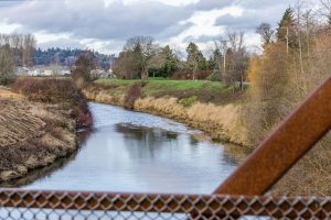A view of the Green River and homes in Kent, Washington. It is December.