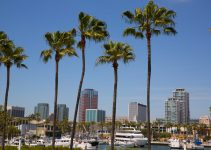 Long Beach California skyline with palm trees from marina port USA.