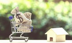A concept photo of a home replica with a shopping cart with money bags.