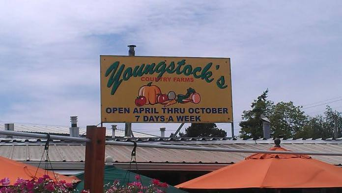 Youngstock's Country Farms