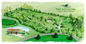 An artists interpretation of what The Meadow will eventually look like. Photo courtesy: Brian Flowers.