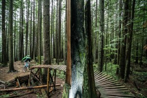 Rogel Media Gabe Rogel captured Carl Jonson biking through the trees of Mt. Fromme, North Shore, BC. Photo credit: Rogel Media.